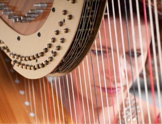 Heleen Bartels Harpiste Harp
